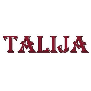 Logo partnerski tehnički pregled TEHNIČKI PREGLED TALIJA